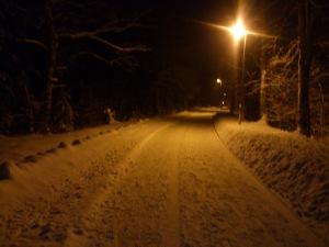 Lugnt och skönt på mörk vinterväg
