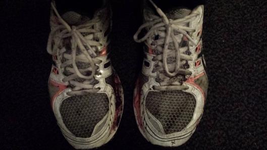 Det var rätt blött och lerigt i skogen...