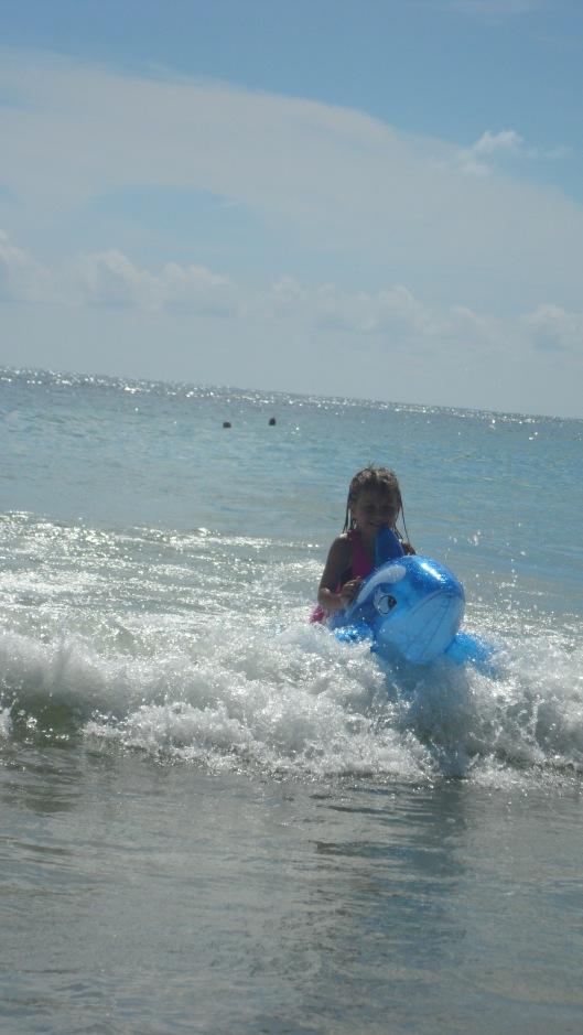 Ida surfar späckhuggare i vågorna
